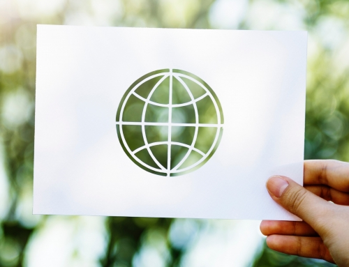 Globe cutout on white paper held up to nature background